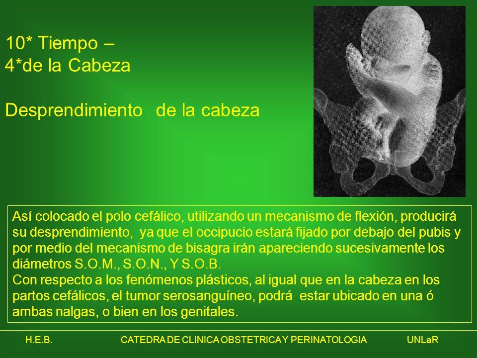 H.E.B.CATEDRA DE CLINICA OBSTETRICA Y PERINATOLOGIAUNLaR 10* Tiempo – 4*de la Cabeza Desprendimiento de la cabeza Así colocado el polo cefálico, utili