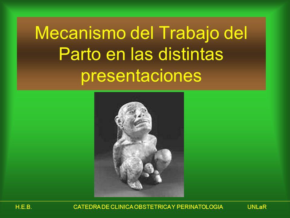 H.E.B.CATEDRA DE CLINICA OBSTETRICA Y PERINATOLOGIAUNLaR Mecanismo del Trabajo del Parto en las distintas presentaciones