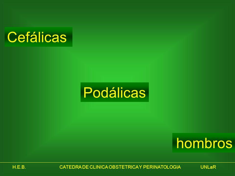 H.E.B.CATEDRA DE CLINICA OBSTETRICA Y PERINATOLOGIAUNLaR Cefálicas Podálicas hombros