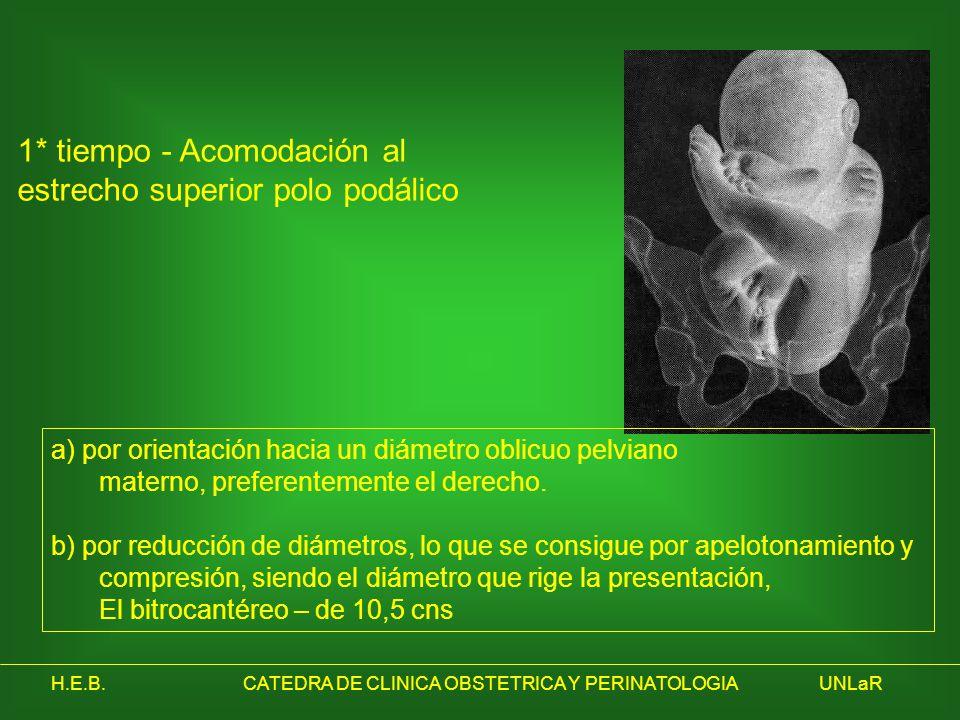 H.E.B.CATEDRA DE CLINICA OBSTETRICA Y PERINATOLOGIAUNLaR a) por orientación hacia un diámetro oblicuo pelviano materno, preferentemente el derecho. b)