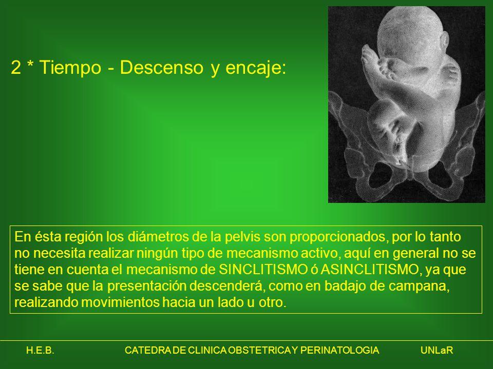 H.E.B.CATEDRA DE CLINICA OBSTETRICA Y PERINATOLOGIAUNLaR 2 * Tiempo - Descenso y encaje: En ésta región los diámetros de la pelvis son proporcionados,