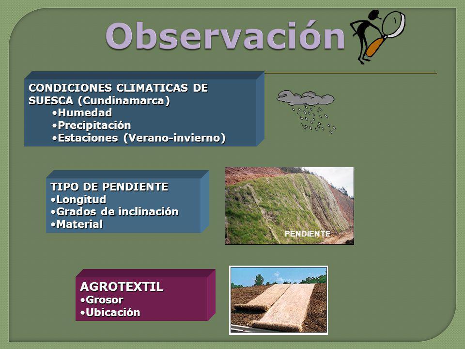 PENDIENTE CONDICIONES CLIMATICAS DE SUESCA (Cundinamarca) HumedadHumedad PrecipitaciónPrecipitación Estaciones (Verano-invierno)Estaciones (Verano-inv
