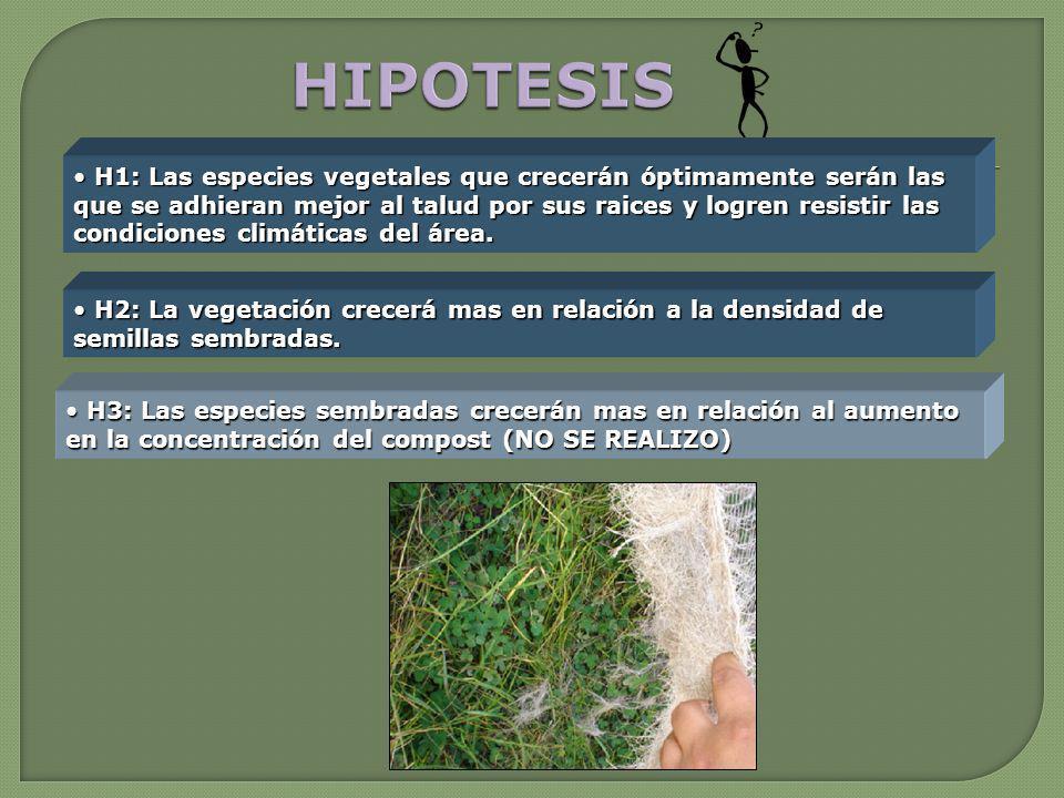 H2: La vegetación crecerá mas en relación a la densidad de semillas sembradas. H2: La vegetación crecerá mas en relación a la densidad de semillas sem