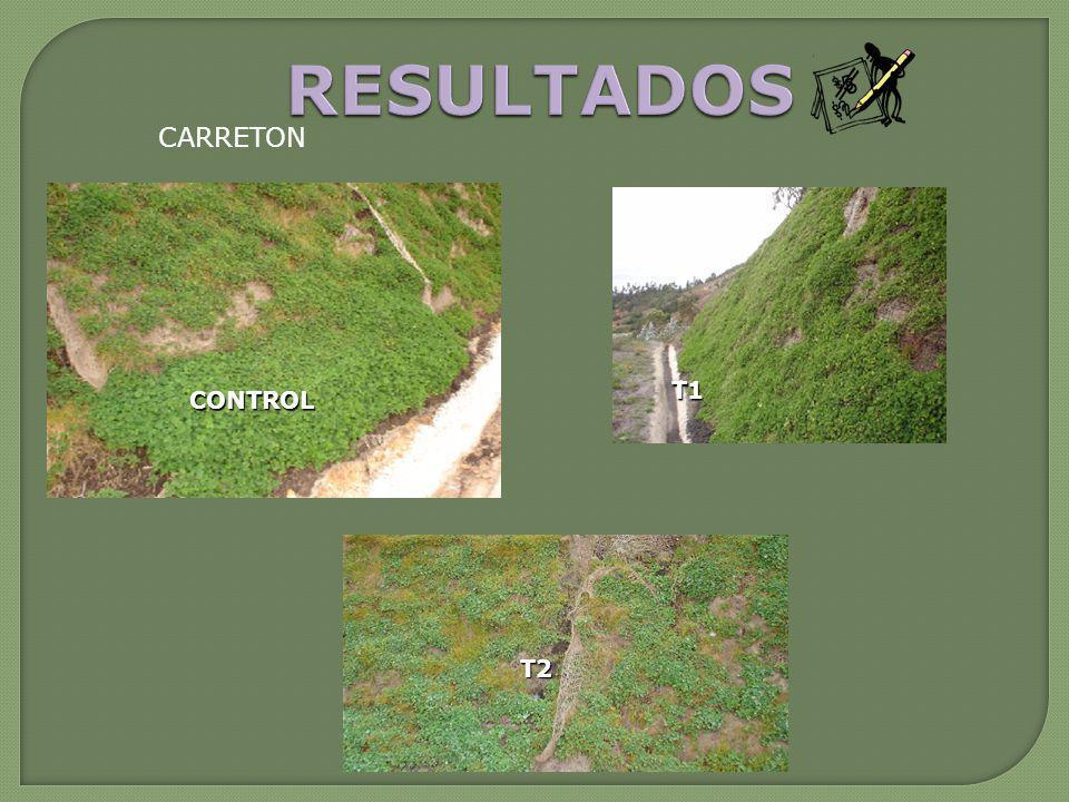 CARRETON CONTROL T1 T2
