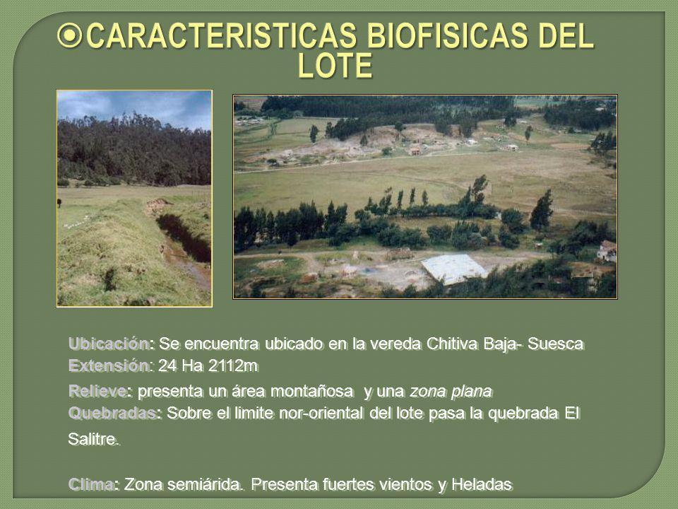 CARACTERISTICAS BIOFISICAS DEL LOTE CARACTERISTICAS BIOFISICAS DEL LOTE Ubicación: Se encuentra ubicado en la vereda Chitiva Baja- Suesca Extensión: 2