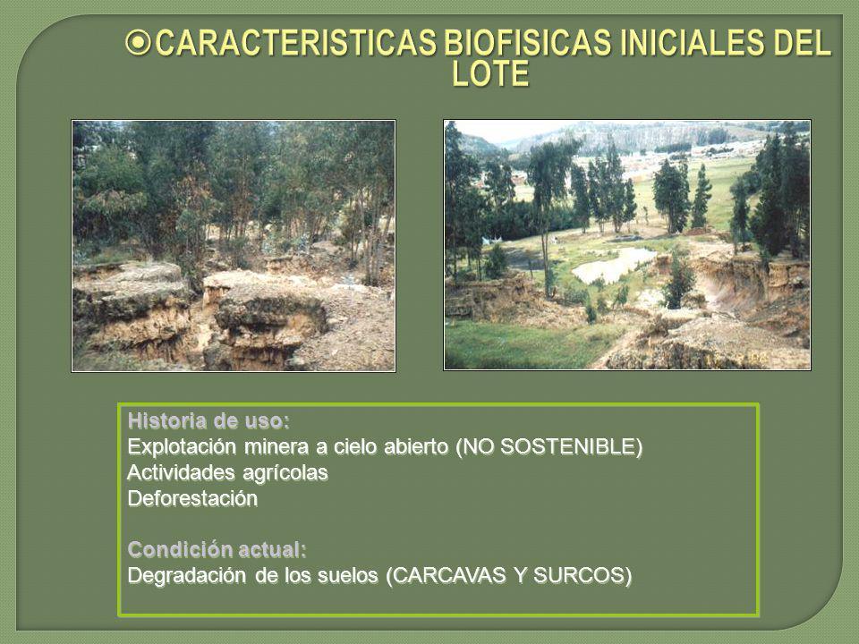 CARACTERISTICAS BIOFISICAS INICIALES DEL LOTE CARACTERISTICAS BIOFISICAS INICIALES DEL LOTE Historia de uso: Explotación minera a cielo abierto (NO SOSTENIBLE) Actividades agrícolas Deforestación Condición actual: Degradación de los suelos (CARCAVAS Y SURCOS) Historia de uso: Explotación minera a cielo abierto (NO SOSTENIBLE) Actividades agrícolas Deforestación Condición actual: Degradación de los suelos (CARCAVAS Y SURCOS)
