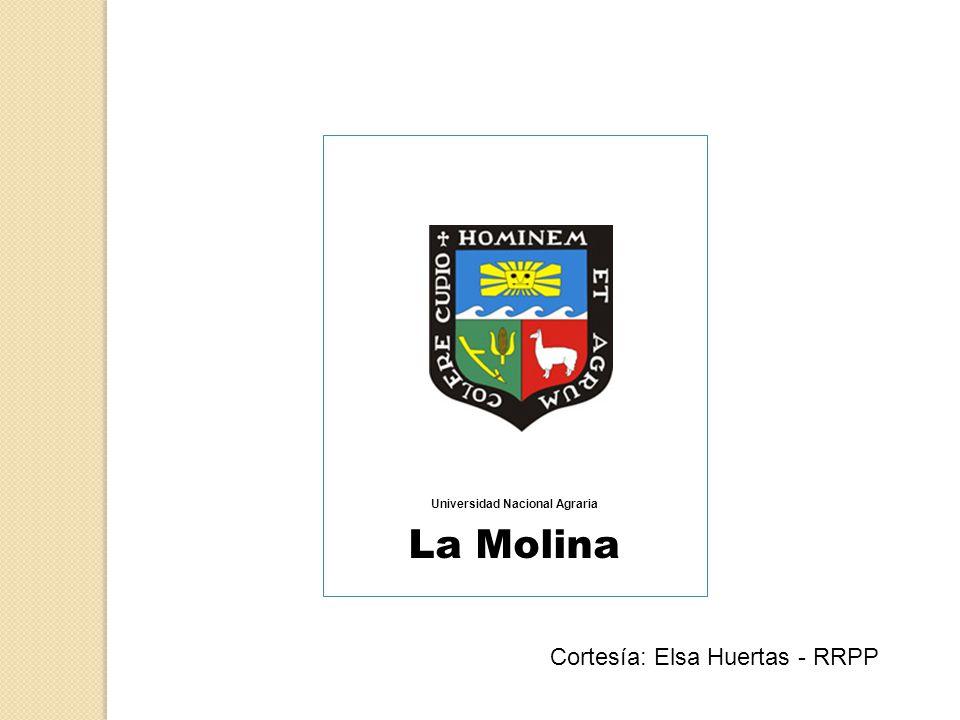 Universidad Nacional Agraria La Molina Cortesía: Elsa Huertas - RRPP