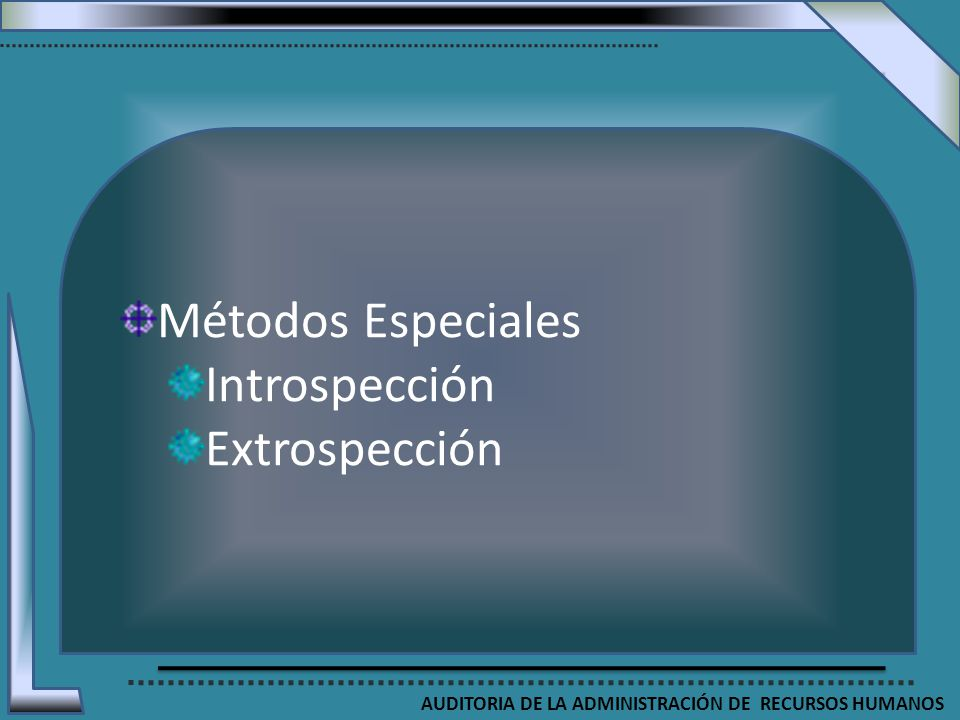AUDITORIA DE LA ADMINISTRACIÓN DE RECURSOS HUMANOS Métodos Especiales Introspección Extrospección