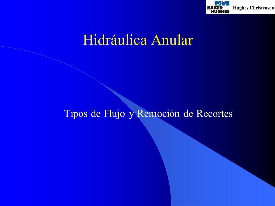 Hidráulica Anular Tipos de Flujo y Remoción de Recortes