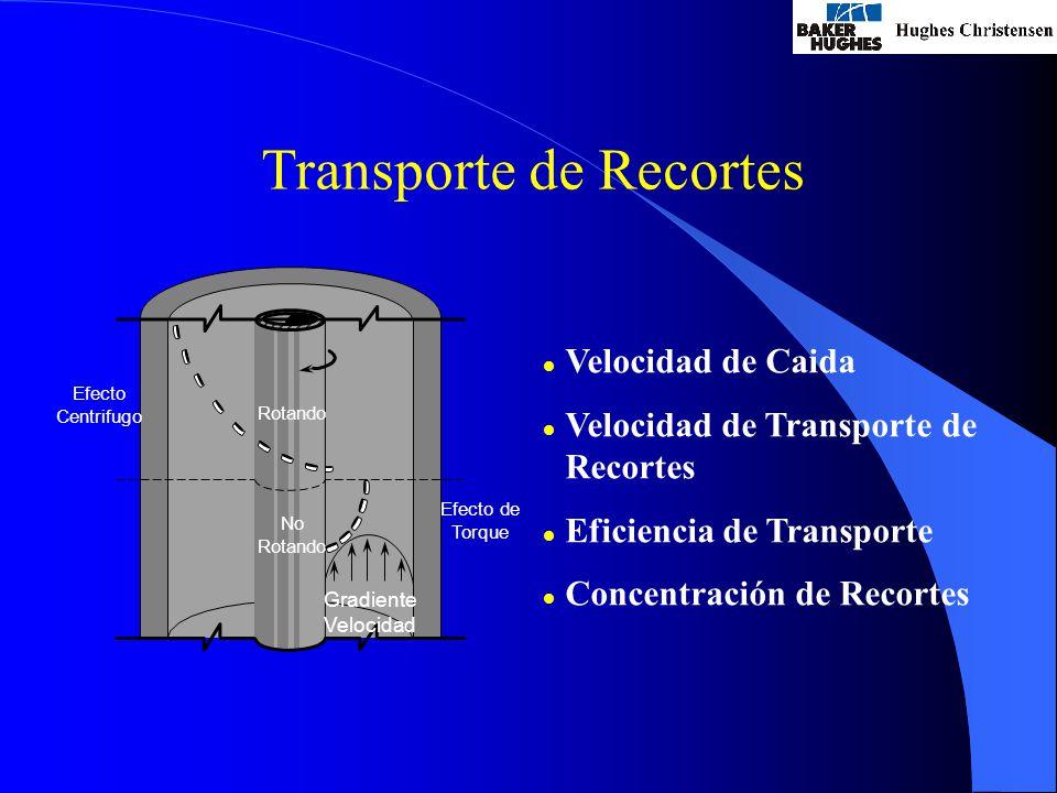Transporte de Recortes l Velocidad de Caida l Velocidad de Transporte de Recortes l Eficiencia de Transporte l Concentración de Recortes Efecto Centrifugo Efecto de Torque Rotando No Rotando Gradiente Velocidad