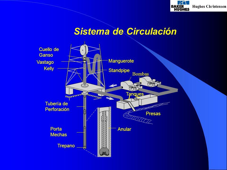 Sistema de Circulación Bombas Standpipe Manguerote Cuello de Ganso Vastago Kelly Tubería de Perforación Porta Mechas Trepano Anular Tanques Presas