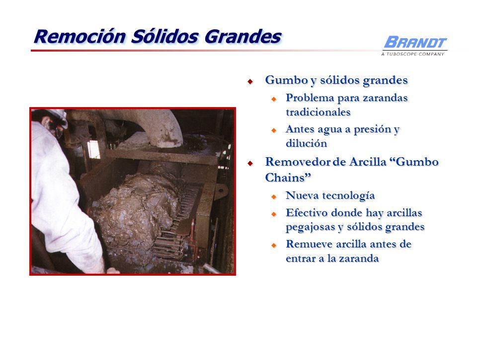 Remoción Sólidos Grandes Gumbo y sólidos grandes Gumbo y sólidos grandes u Problema para zarandas tradicionales u Antes agua a presión y dilución Remo