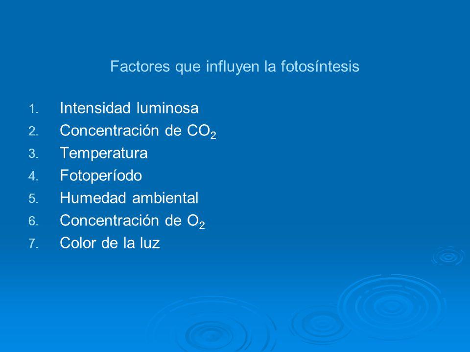 Factores que influyen la fotosíntesis 1. 1. Intensidad luminosa 2. 2. Concentración de CO 2 3. 3. Temperatura 4. 4. Fotoperíodo 5. 5. Humedad ambienta