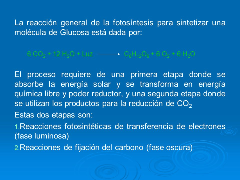 La reacción general de la fotosíntesis para sintetizar una molécula de Glucosa está dada por: 6 CO 2 + 12 H 2 O + Luz C 6 H 12 O 6 + 6 O 2 + 6 H 2 O E