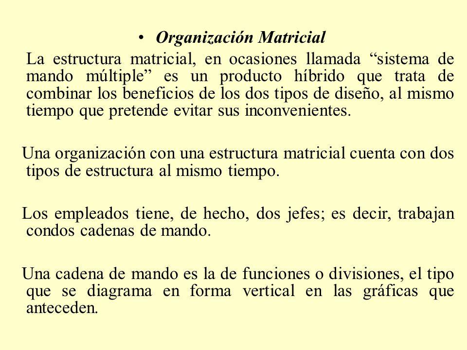Organización Matricial La estructura matricial, en ocasiones llamada sistema de mando múltiple es un producto híbrido que trata de combinar los benefi
