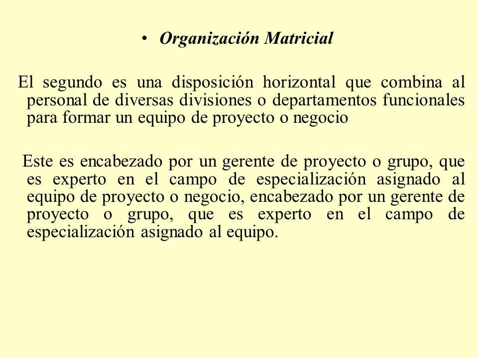 Organización Matricial El segundo es una disposición horizontal que combina al personal de diversas divisiones o departamentos funcionales para formar