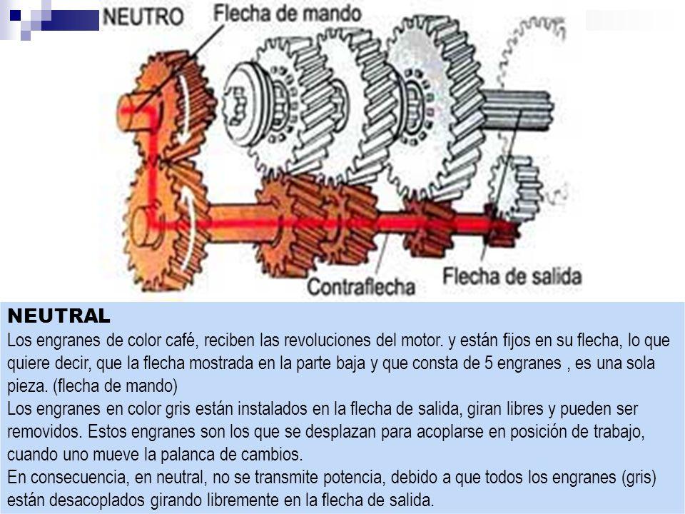 NEUTRAL Los engranes de color café, reciben las revoluciones del motor.