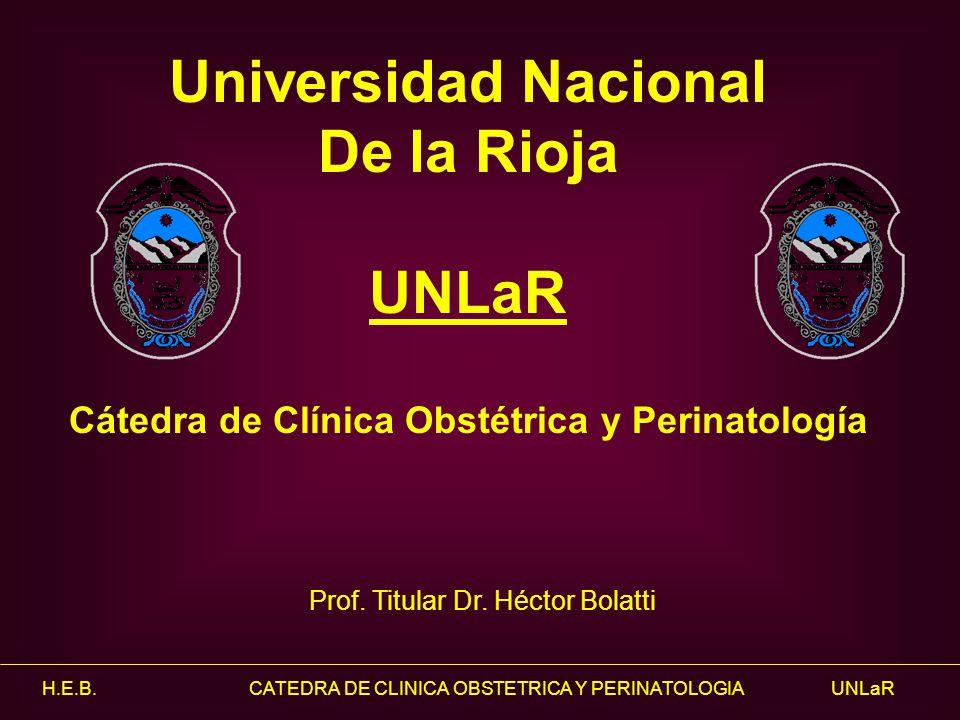 H.E.B. CATEDRA DE CLINICA OBSTETRICA Y PERINATOLOGIA UNLaR Universidad Nacional De la Rioja UNLaR Cátedra de Clínica Obstétrica y Perinatología Prof.