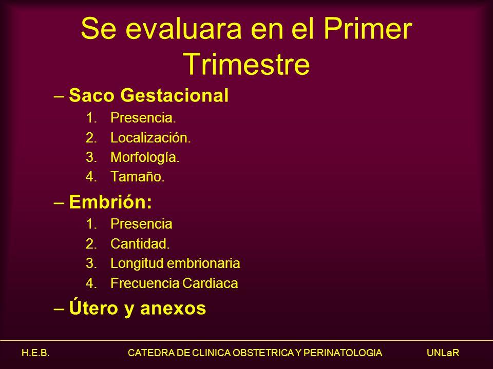 H.E.B. CATEDRA DE CLINICA OBSTETRICA Y PERINATOLOGIA UNLaR Se evaluara en el Primer Trimestre –Saco Gestacional 1.Presencia. 2.Localización. 3.Morfolo