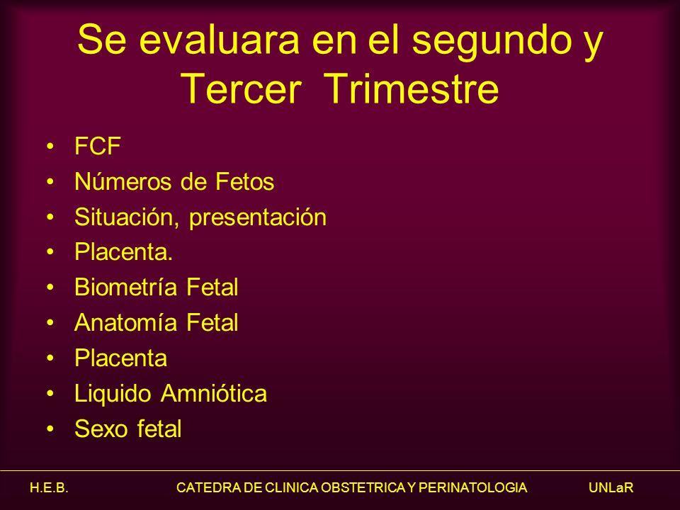 H.E.B. CATEDRA DE CLINICA OBSTETRICA Y PERINATOLOGIA UNLaR Se evaluara en el segundo y Tercer Trimestre FCF Números de Fetos Situación, presentación P