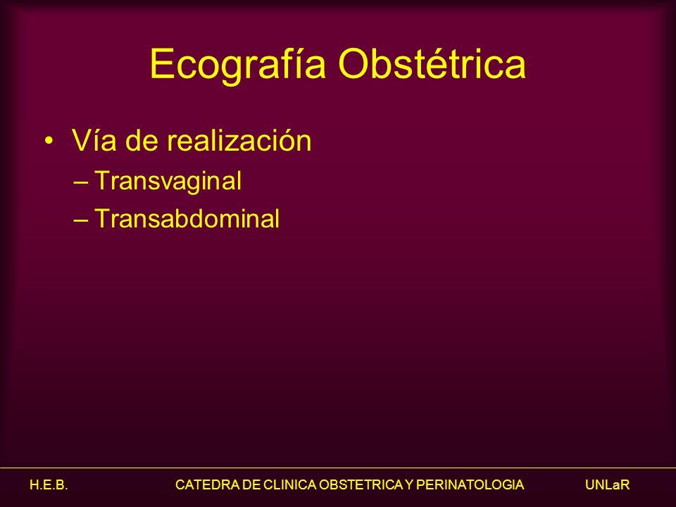 H.E.B. CATEDRA DE CLINICA OBSTETRICA Y PERINATOLOGIA UNLaR Ecografía Obstétrica Vía de realización –Transvaginal –Transabdominal