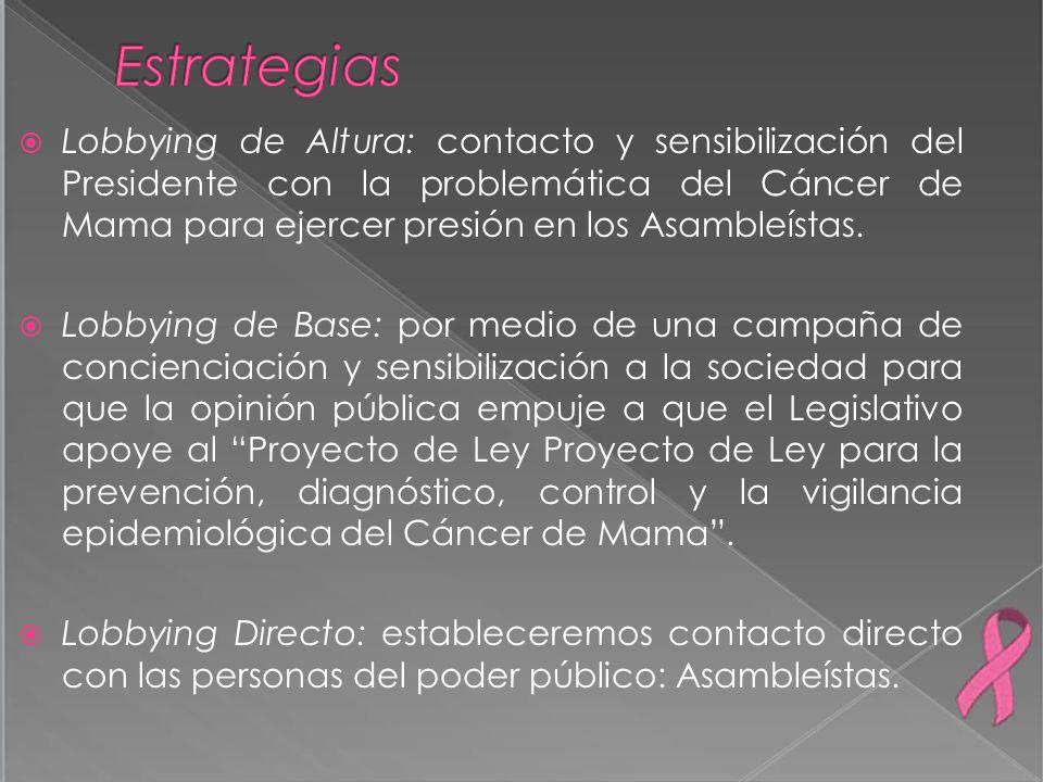 Lobbying de Altura: contacto y sensibilización del Presidente con la problemática del Cáncer de Mama para ejercer presión en los Asambleístas. Lobbyin