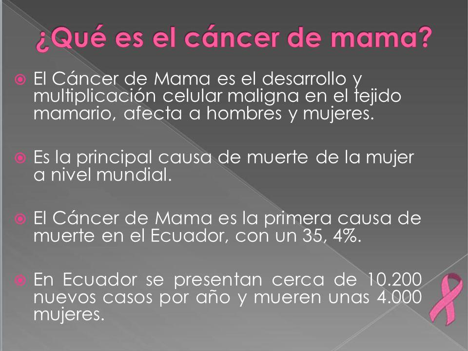 El Cáncer de Mama es el desarrollo y multiplicación celular maligna en el tejido mamario, afecta a hombres y mujeres. Es la principal causa de muerte
