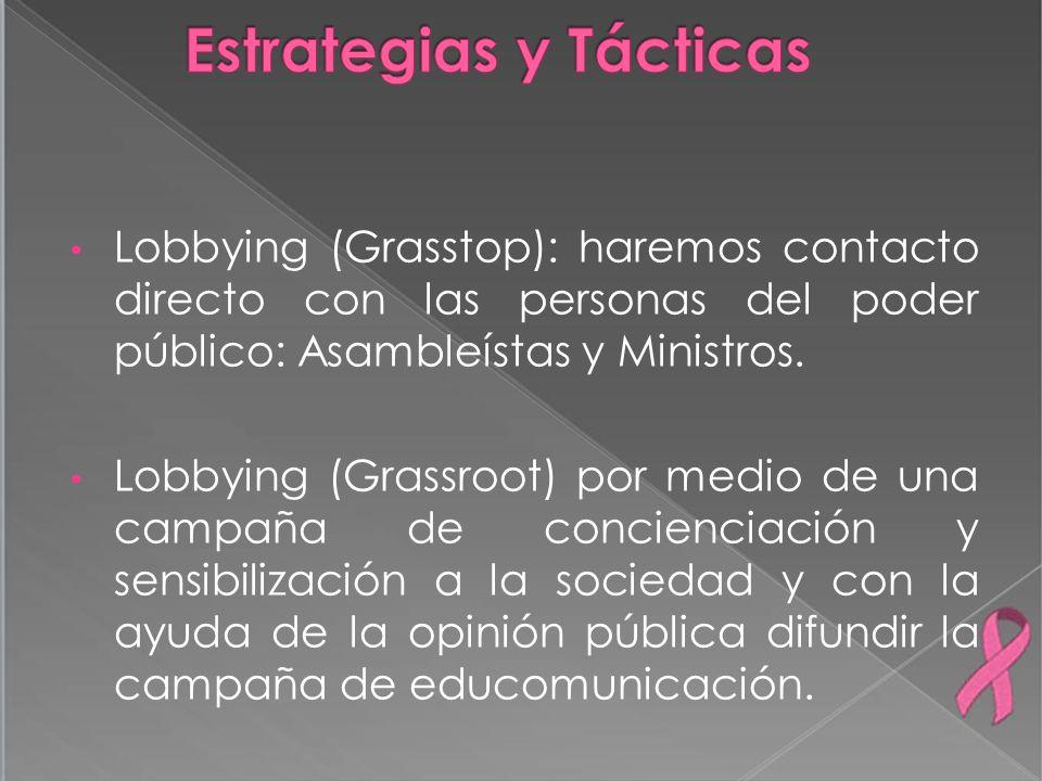 Lobbying (Grasstop): haremos contacto directo con las personas del poder público: Asambleístas y Ministros. Lobbying (Grassroot) por medio de una camp