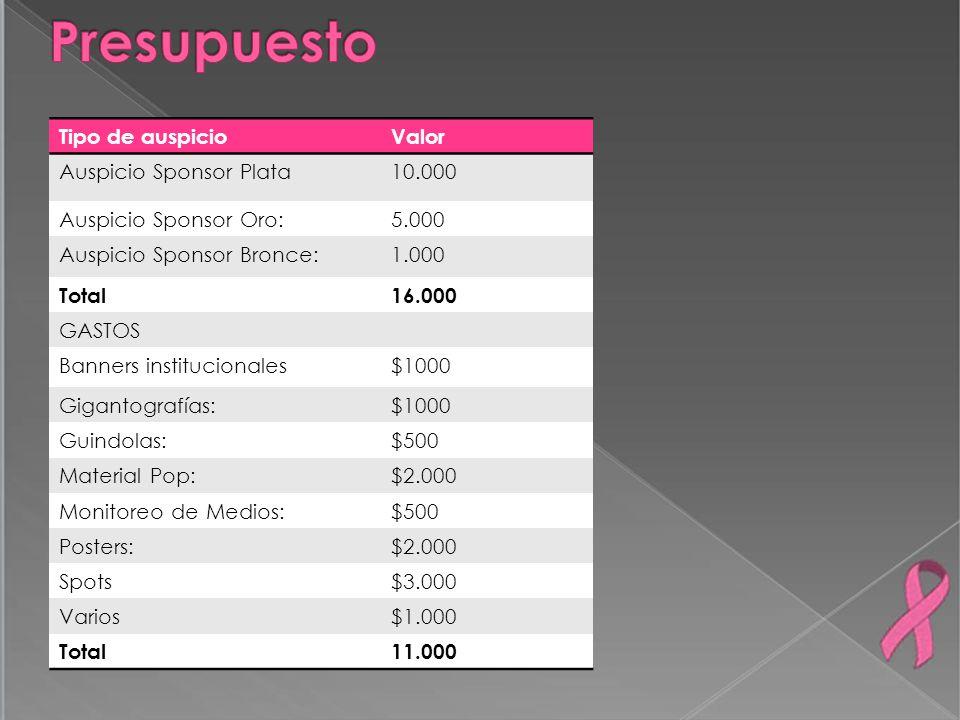 Tipo de auspicioValor Auspicio Sponsor Plata10.000 Auspicio Sponsor Oro:5.000 Auspicio Sponsor Bronce:1.000 Total16.000 GASTOS Banners institucionales