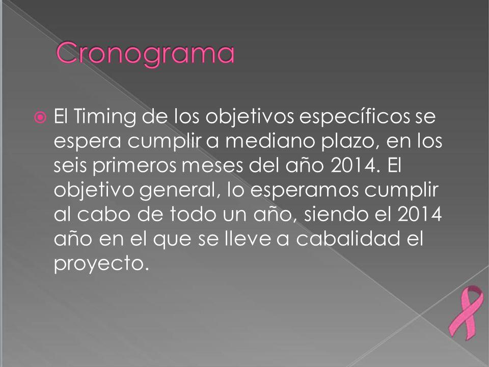 El Timing de los objetivos específicos se espera cumplir a mediano plazo, en los seis primeros meses del año 2014. El objetivo general, lo esperamos c