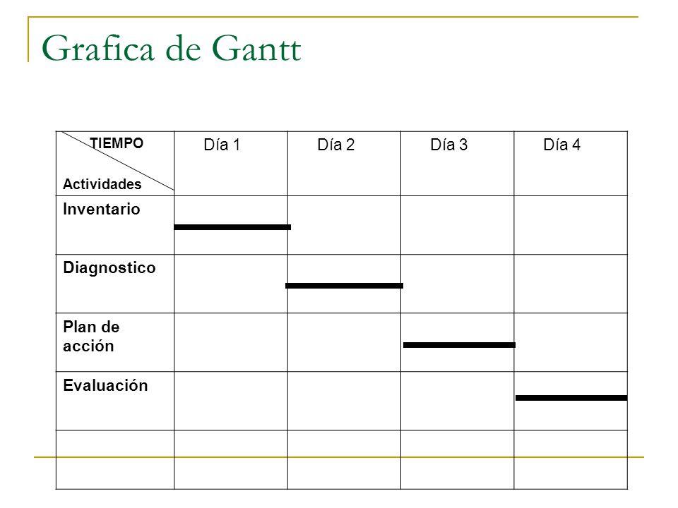 Grafica de Gantt TIEMPO Actividades Día 1 Día 2 Día 3 Día 4 Inventario Diagnostico Plan de acción Evaluación