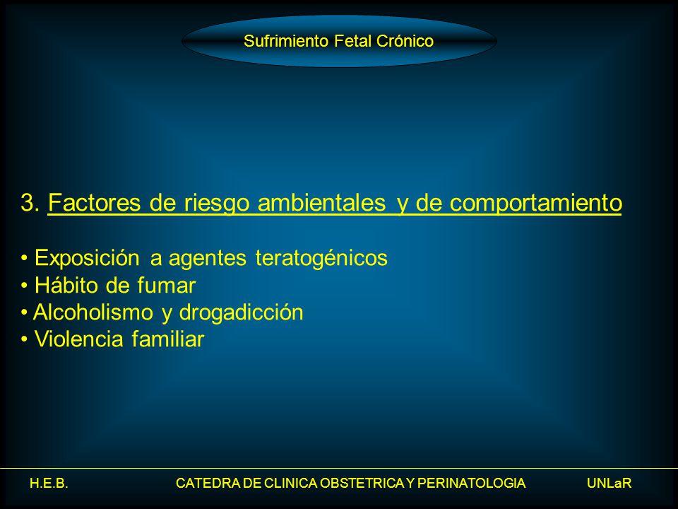H.E.B. CATEDRA DE CLINICA OBSTETRICA Y PERINATOLOGIA UNLaR 3. Factores de riesgo ambientales y de comportamiento Exposición a agentes teratogénicos Há