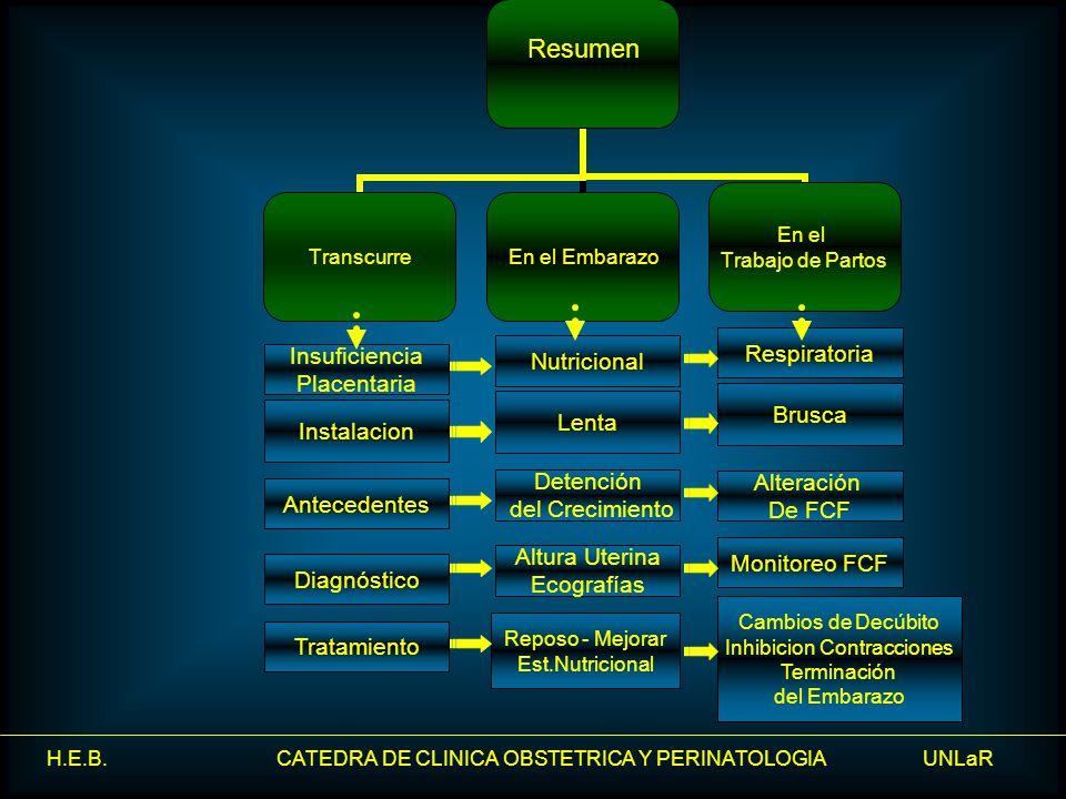 H.E.B. CATEDRA DE CLINICA OBSTETRICA Y PERINATOLOGIA UNLaR Resumen TranscurreEn el Embarazo En el Trabajo de Partos Brusca Lenta Instalacion Tratamien