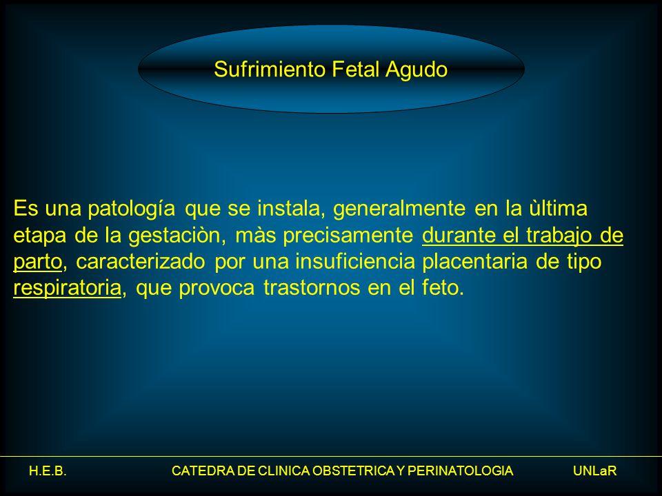 H.E.B. CATEDRA DE CLINICA OBSTETRICA Y PERINATOLOGIA UNLaR Es una patología que se instala, generalmente en la ùltima etapa de la gestaciòn, màs preci