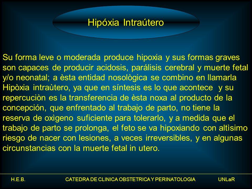 H.E.B. CATEDRA DE CLINICA OBSTETRICA Y PERINATOLOGIA UNLaR Su forma leve o moderada produce hipoxia y sus formas graves son capaces de producir acidos