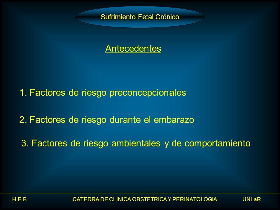 H.E.B. CATEDRA DE CLINICA OBSTETRICA Y PERINATOLOGIA UNLaR Sufrimiento Fetal Crónico Antecedentes 1. Factores de riesgo preconcepcionales 3. Factores