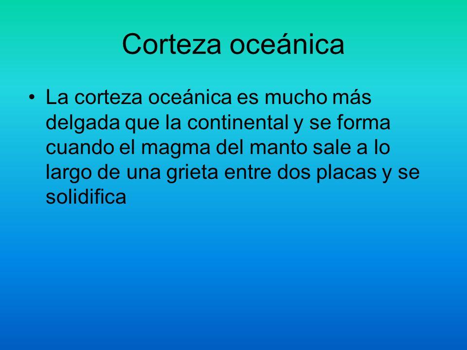 Corteza oceánica La corteza oceánica es mucho más delgada que la continental y se forma cuando el magma del manto sale a lo largo de una grieta entre