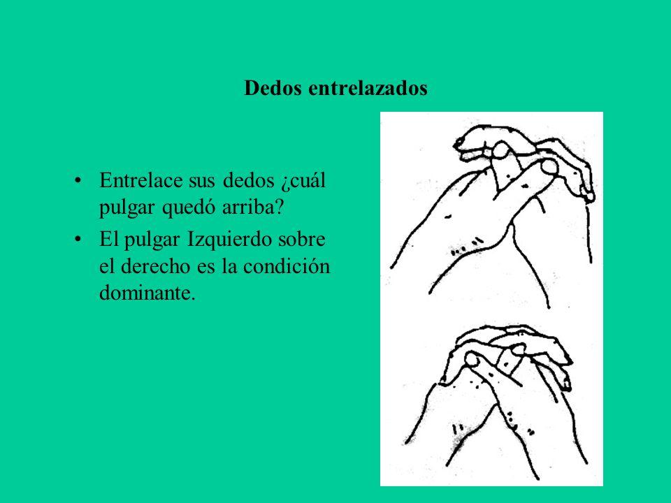 Dedos entrelazados Entrelace sus dedos ¿cuál pulgar quedó arriba? El pulgar Izquierdo sobre el derecho es la condición dominante.