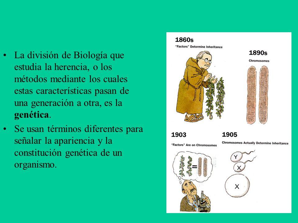 La división de Biología que estudia la herencia, o los métodos mediante los cuales estas características pasan de una generación a otra, es la genétic
