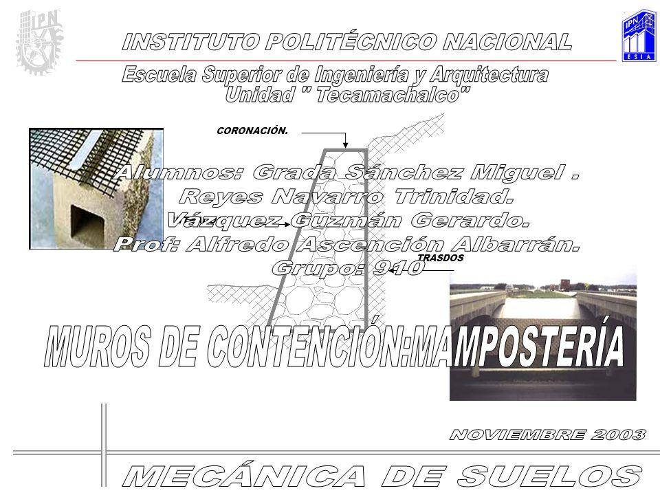DESNIVELES. ESCUELA SUPERIOR DE INGENIERÍA Y ARQUITECTURA UNIDAD TECAMACHALCO NOVIEMBRE- 03 30