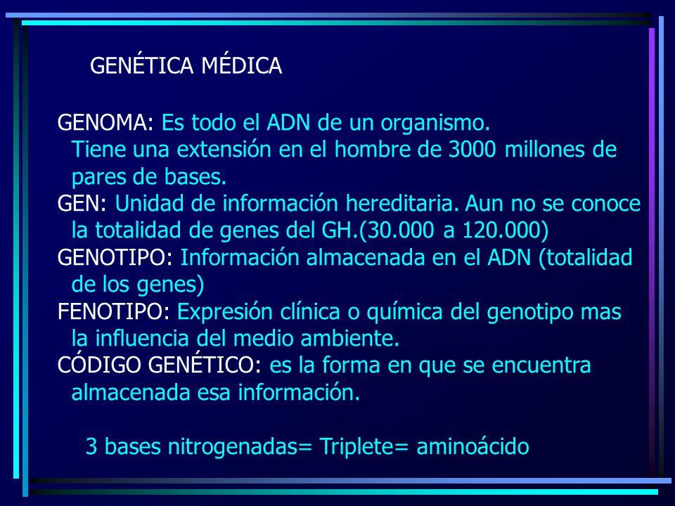GENÉTICA MÉDICA GENOMA: Es todo el ADN de un organismo. Tiene una extensión en el hombre de 3000 millones de pares de bases. GEN: Unidad de informació