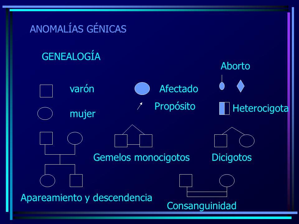 ANOMALÍAS GÉNICAS GENEALOGÍA varón mujer Apareamiento y descendencia Afectado Propósito Aborto Heterocigota Gemelos monocigotos Dicigotos Consanguinid