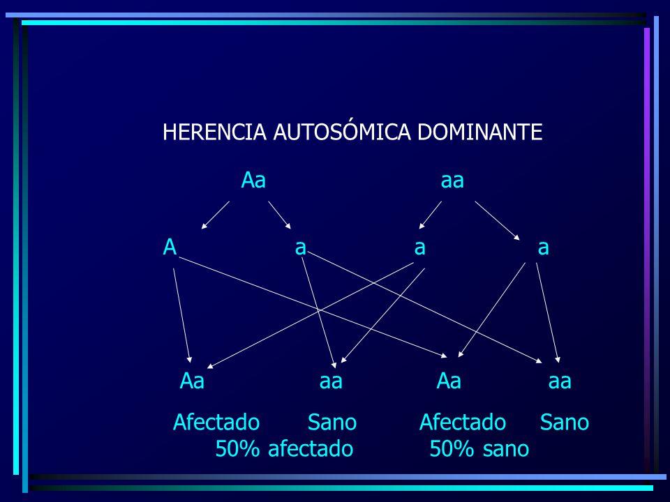 HERENCIA AUTOSÓMICA DOMINANTE Aa aa A aa AaaaAaaa Afectado Sano 50% afectado 50% sano