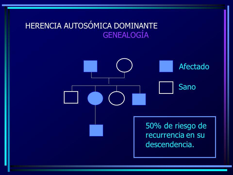 HERENCIA AUTOSÓMICA DOMINANTE GENEALOGÍA Afectado Sano 50% de riesgo de recurrencia en su descendencia.