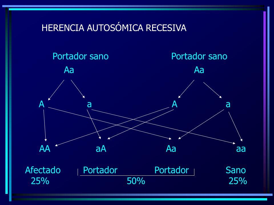 HERENCIA AUTOSÓMICA RECESIVA Aa AA aA Aa aa Afectado Portador Portador Sano 25% 50% 25% Portador sano