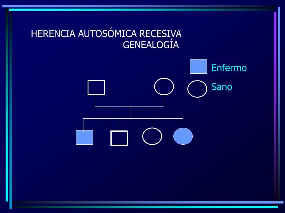 HERENCIA AUTOSÓMICA RECESIVA GENEALOGÍA Enfermo Sano