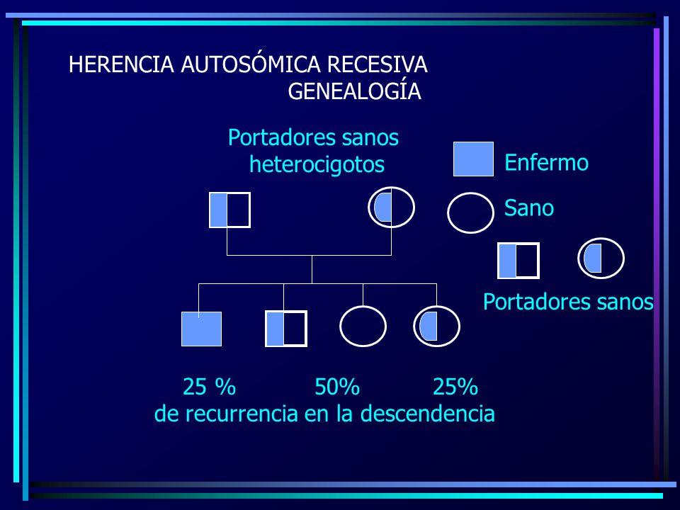 HERENCIA AUTOSÓMICA RECESIVA GENEALOGÍA 25 % 50% 25% de recurrencia en la descendencia Portadores sanos heterocigotos Enfermo Sano Portadores sanos