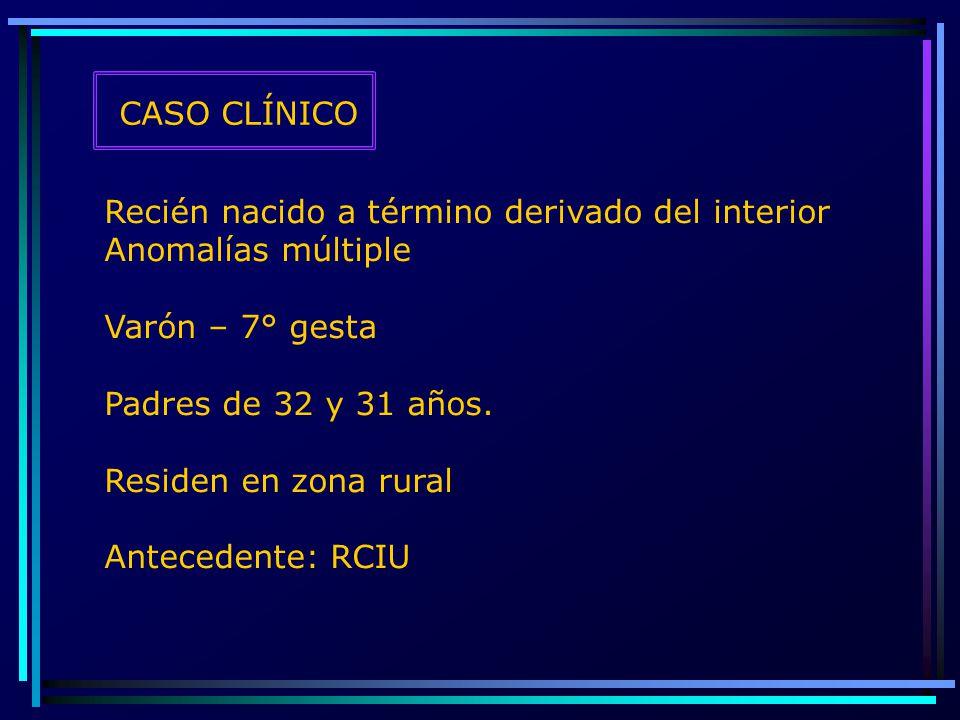 CASO CLÍNICO Recién nacido a término derivado del interior Anomalías múltiple Varón – 7° gesta Padres de 32 y 31 años. Residen en zona rural Anteceden