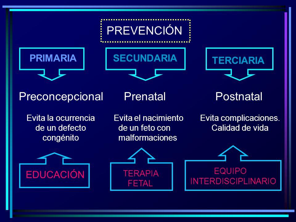 PREVENCIÓN PRIMARIA SECUNDARIA TERCIARIA Preconcepcional Evita la ocurrencia de un defecto congénito Prenatal Evita el nacimiento de un feto con malfo