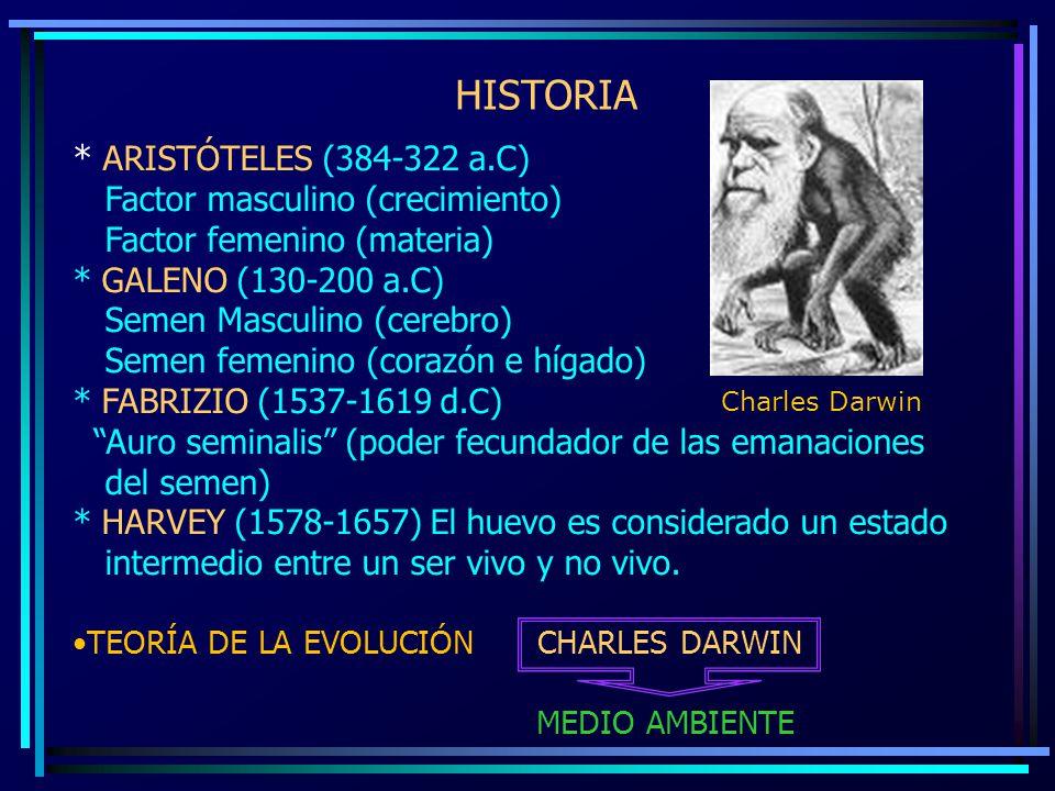HISTORIA * ARISTÓTELES (384-322 a.C) Factor masculino (crecimiento) Factor femenino (materia) * GALENO (130-200 a.C) Semen Masculino (cerebro) Semen f